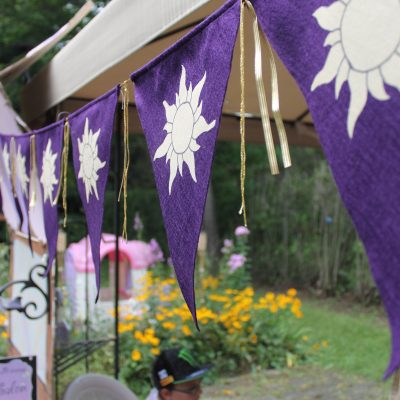Tangled Inspired Party